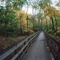 Boardwalk in Dimming Fall Light