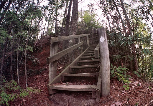 Stairs on Sheltowee Trace