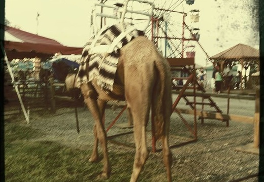 Clark County Fair_ Summer 2010 -015.jpg
