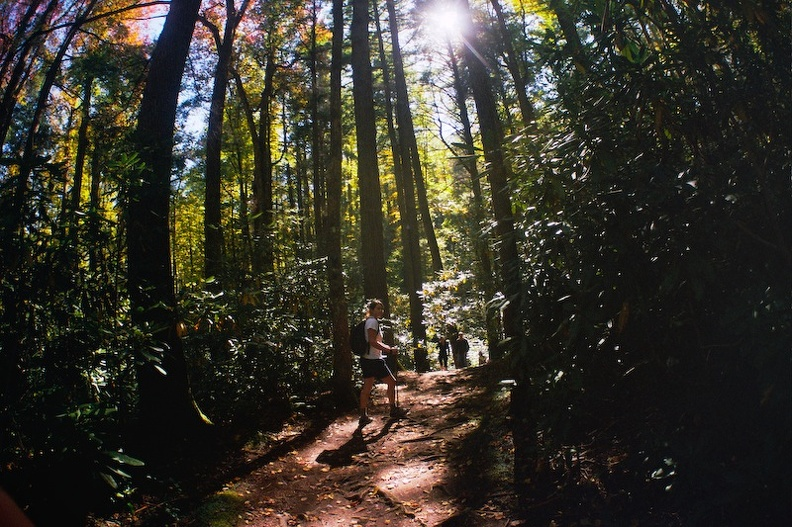 Great Smoky Mountains in the Fall 4.jpg