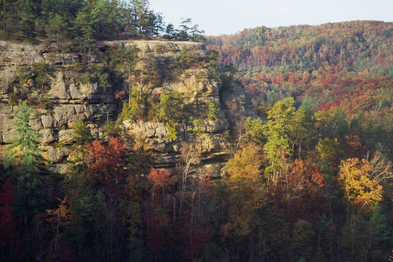 Red River Gorge in Fall 2.jpg