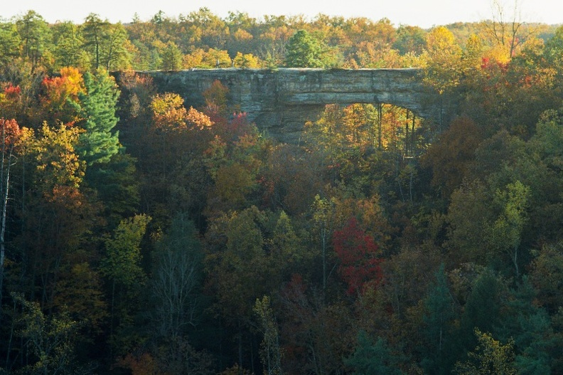 Red River Gorge in Fall 3.jpg