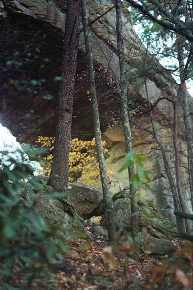 Red River Gorge in Fall 5.jpg