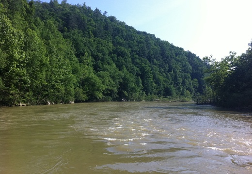 The River Big South Fork - 45