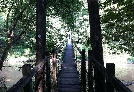 Sheltowee Trace Bridge, Red River Gorge