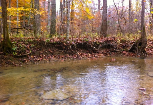 Sheltowee Trace, Clear Creek Furnace - 18
