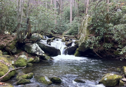 Great Smokies - 03