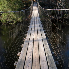Picket State Park, Swinging Bridge - DSCN9799