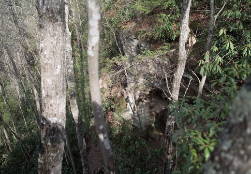 Hidden Arch, Red River Gorge